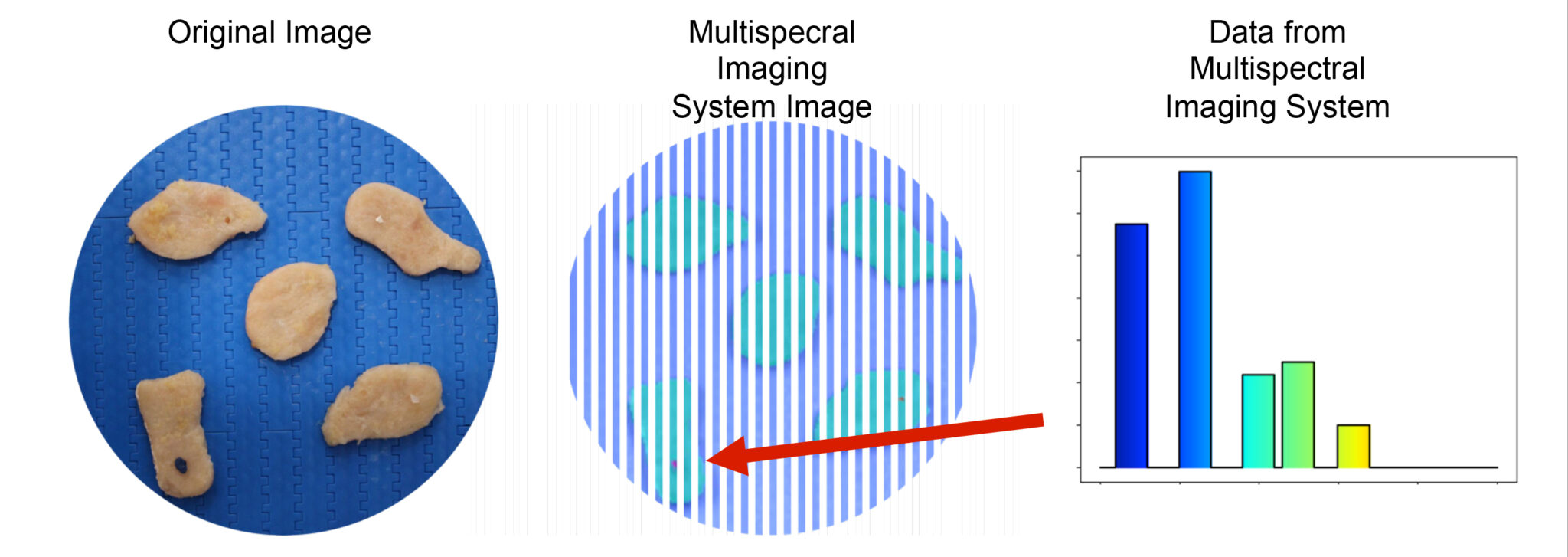Foreign material detection on chicken nuggets using multispectral imaging
