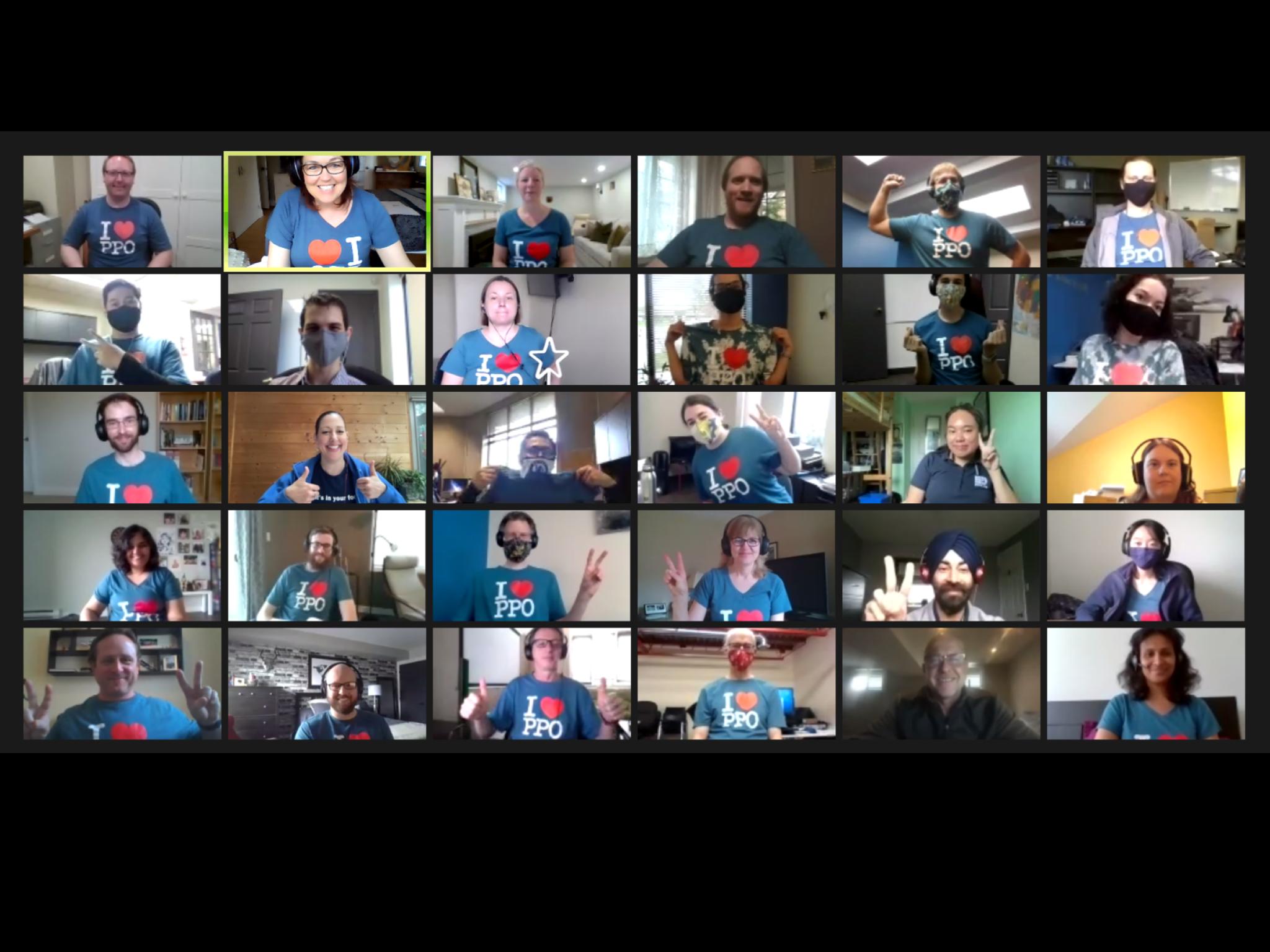 Screenshot of PPO team